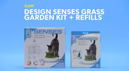 Catit Design Senses Grass Refill 2 Count Chewy Com