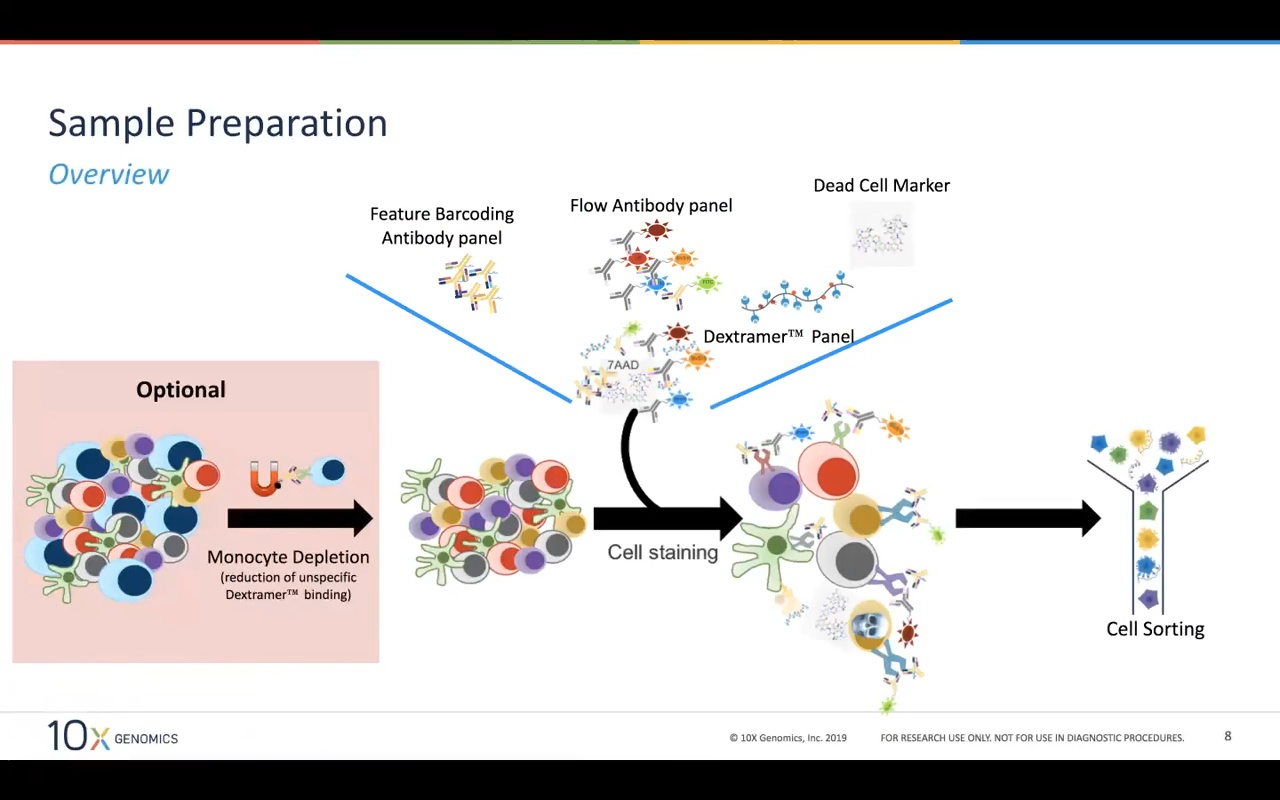 Redefining Immune Cell Phenotyping & Characterization