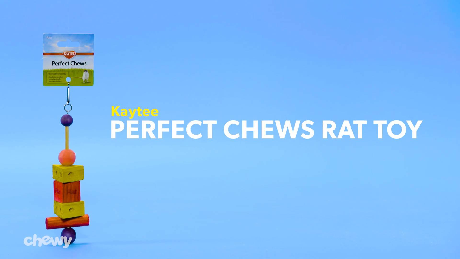 Kaytee Perfect Chews for Rats