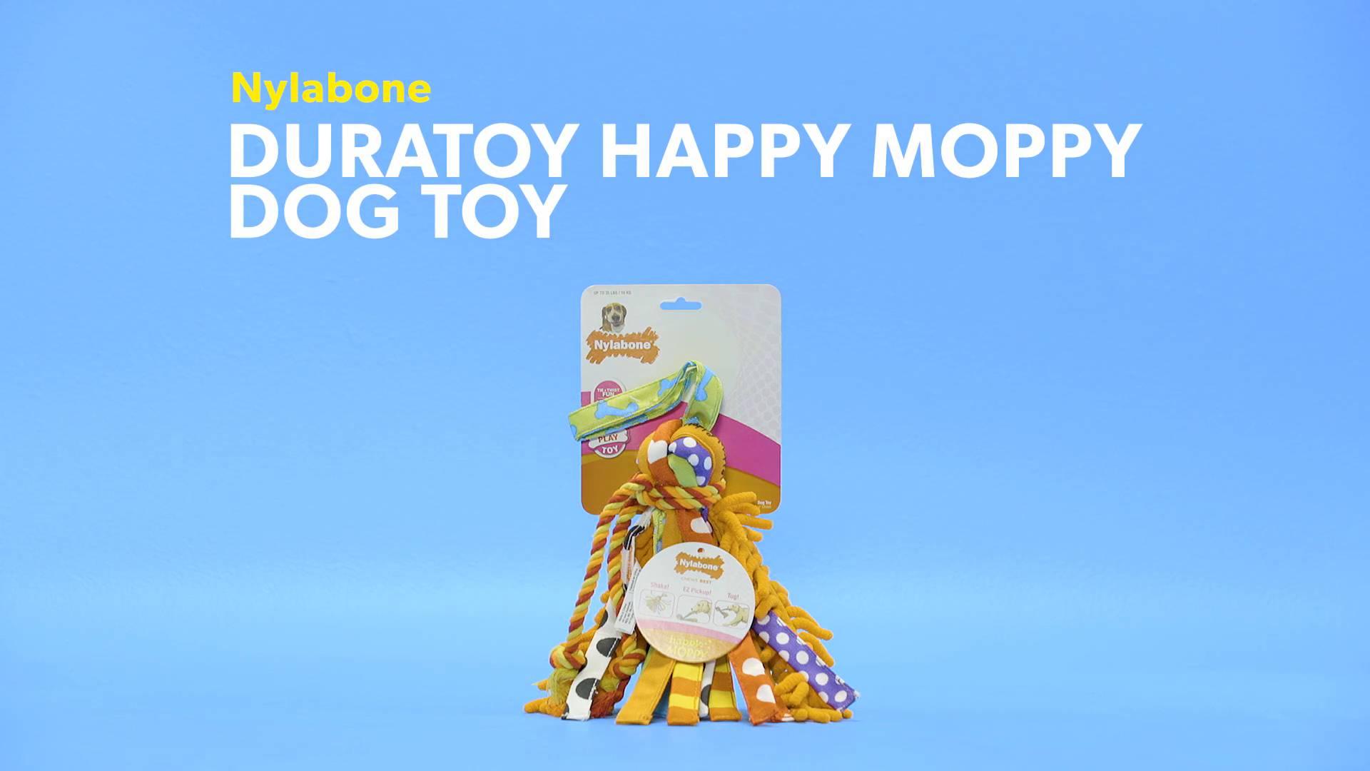 NEW Nylabone Interactive Large Happy Moppy Dog Chew Toy FREE SHIPPING