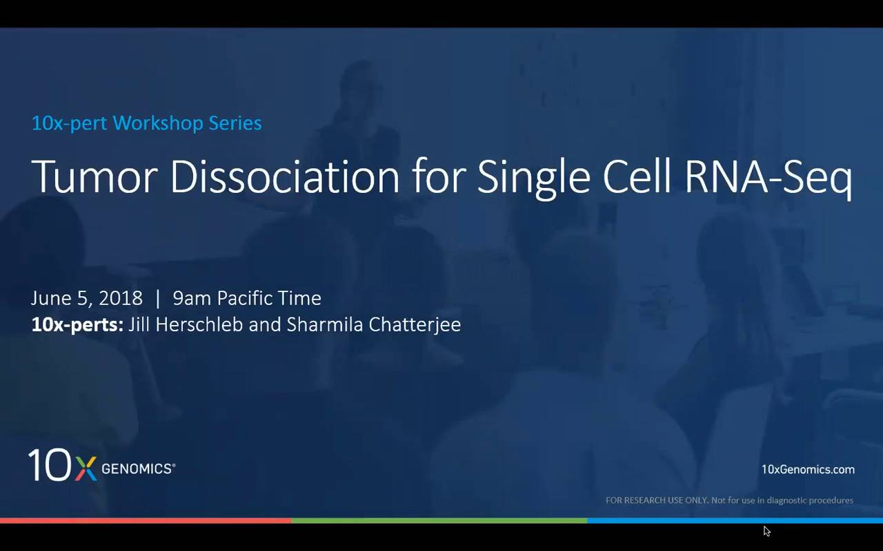 Tumor Dissociation for Single Cell RNA-seq